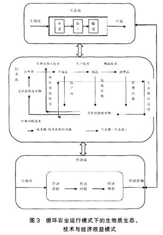 2现代循环农业系统结构模型及实例分析