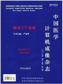 中国医学计算机成像杂志杂志