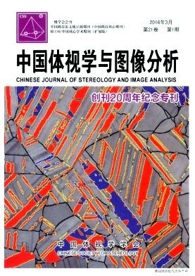 中国体视学与图像分析