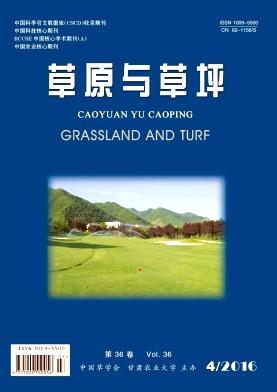 草原与草坪
