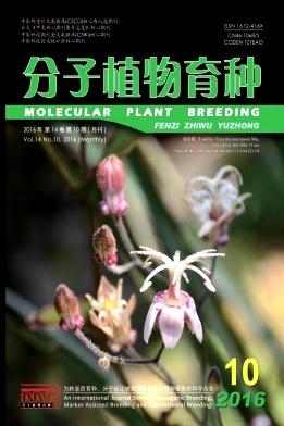 分子植物育种